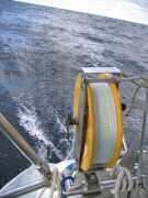 Trolling through the Gulf Stream