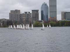 Sailboat race in the Charles River