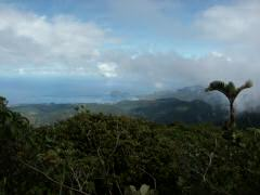 View on way up to top of Morne Diablontin