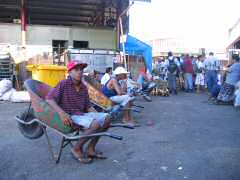 Young Fijians waiting to help customers at the market