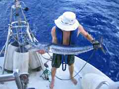 Ken with 44 inch wahoo