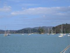 Anchorage near Opua Harbor