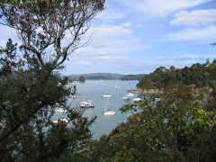 Beautiful view of boats in Opua Harbor