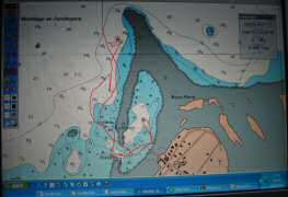 The red line shows our track, asterisks show coral heads, dark green shows the reef, brown shows land