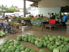 Bountiful produce at Vava'u market -- pineapple for $.50